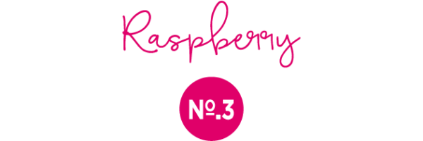 The Gin Ginnery Raspberry Flavour No.3