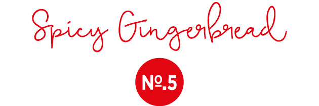 The Gin Ginnery Spicy Gingerbread Flavour No.5